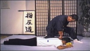Shiatsu Back Massage (Namikoshi)