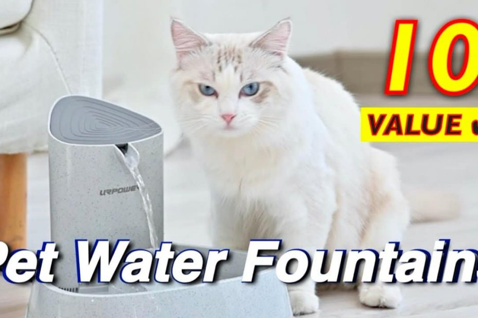 Best Pet Water Drinking Fountains