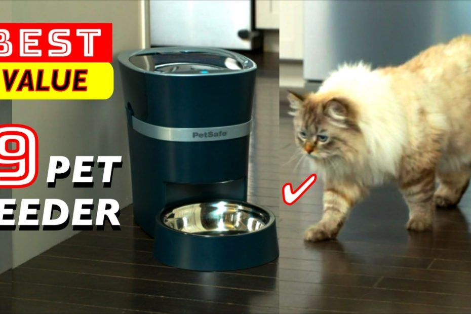 9 Best Value PET Feeder for Cats and small Dogs