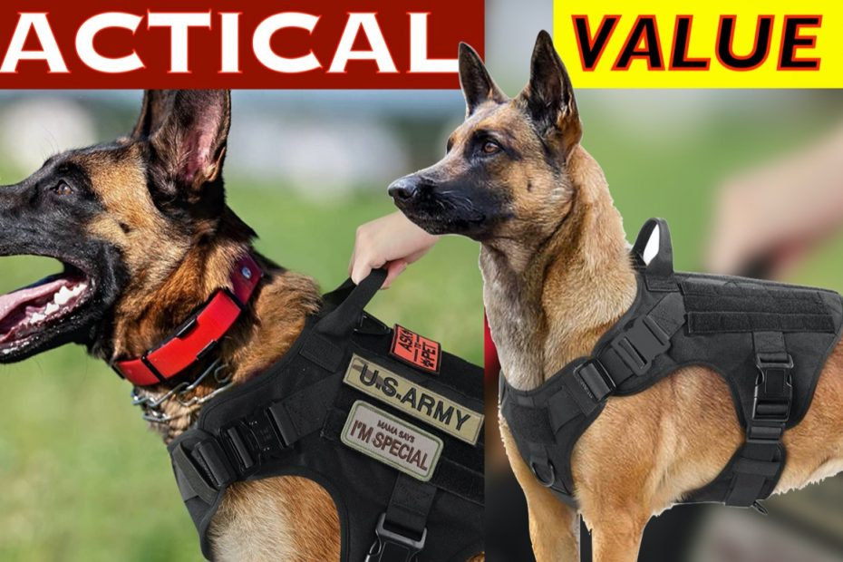 10 Best Value TACTICAL Dog Harness